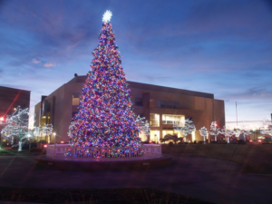 Christmas Tree with LED Lights in Front of Commercial Building